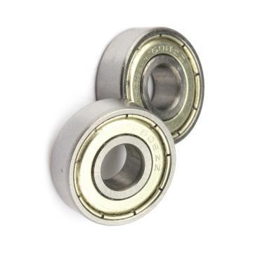 NSK 6204 Zz 6027 Zz 6203-2RS 6309 6204-Rz 6022 6901 3810 2RS Hf Price List Bearing